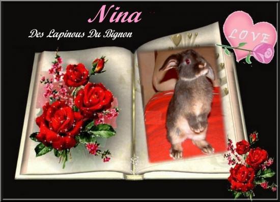 Nouvelle image Nina
